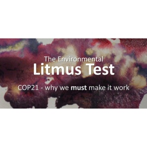 The Environmental Litmus Test